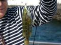 rock fishing lanzarote3